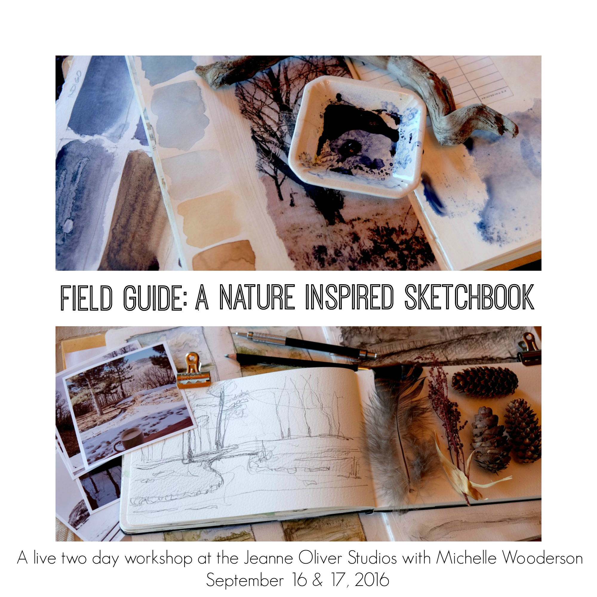 fieldguidecollage
