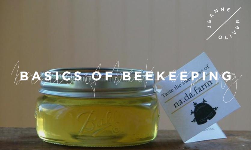 Basics of Beekeeping course image